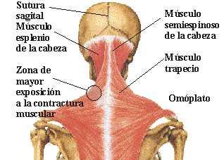 La osteocondrosis en el departamento de pecho los síntomas